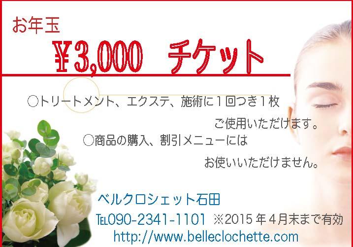 写真3000円チケット